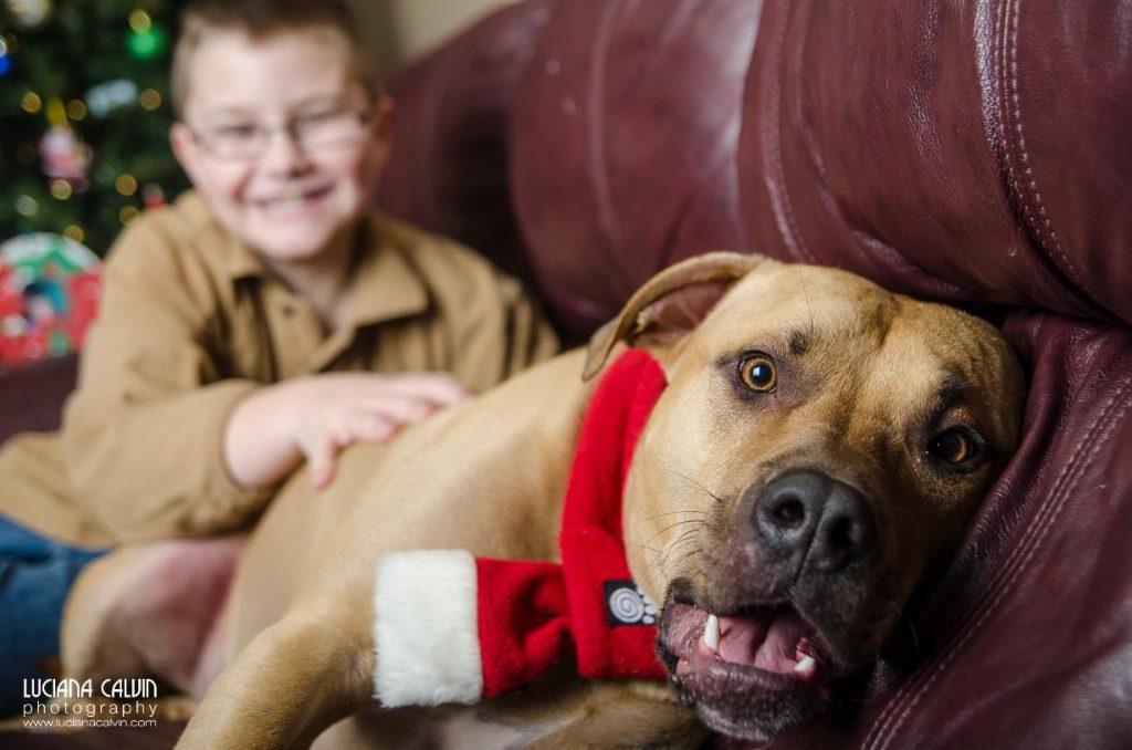 boy and dog with Christmas scarf