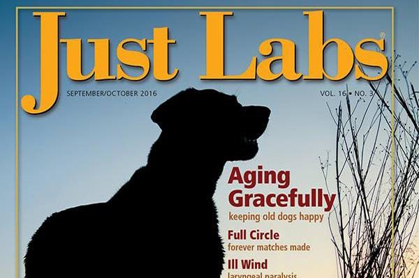 Josie Just Lags magazine cover